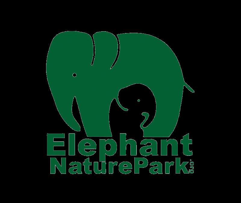 Gastartikel: Marina im Elephant Nature Park – Thailand