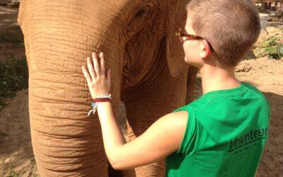 Ein glückliches Zuhause für Elefanten